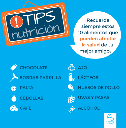 Los 10 TIPS